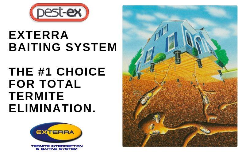 Exterra Termite Baiting System Philippines Review Pest Ex Pest Ex Philippines